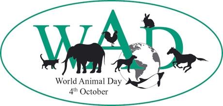 день защиты животных,животные,миасс,международный день
