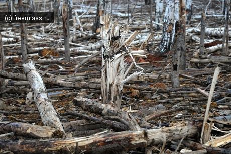 Утилизировать боеприпасы в Чебаркуле  будут без шума и пыли
