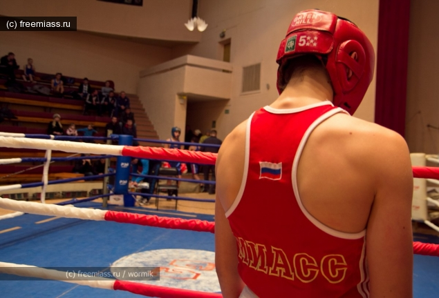 миасс бокс,новости миасс,миасс ру,миасс онлайн,свободный миасс,кубок по боксу,бокс соревнования