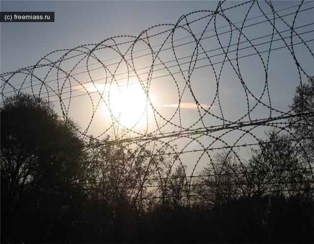 новости миасс,миасс ру,миасс онлайн,свободный миасс,амнистия миасс,амнистия в челябинской области,заключенные челябинская область